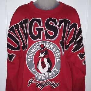 🔥VTG 90'S Youngstown State University Sweatshirt